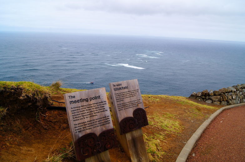 neuseeland cape reinga zwei meere
