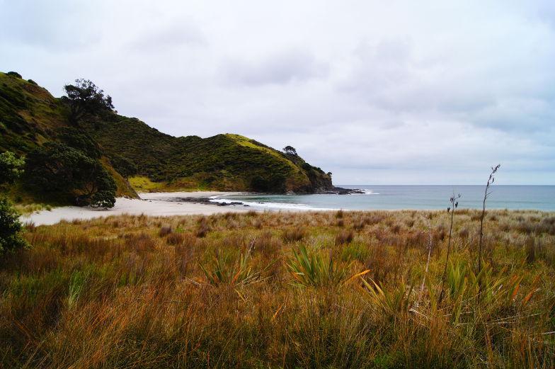 neuseeland strand cape reinga