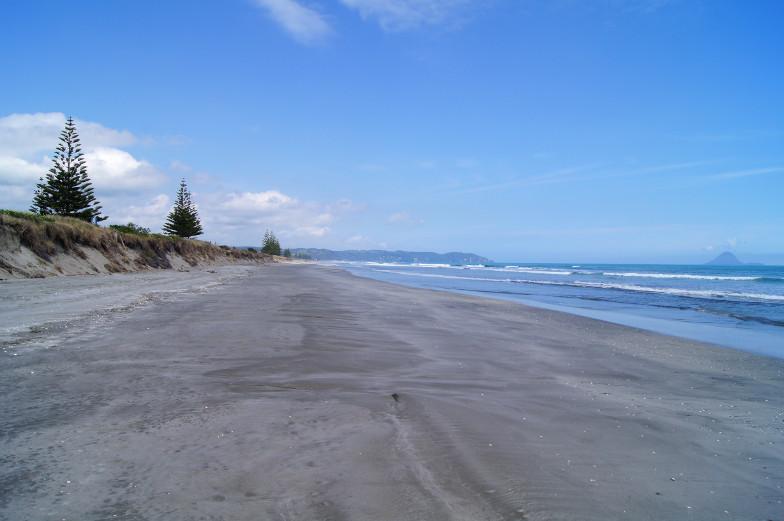 Einsamer Sandstrand in Ohope Sehenswuerdigkeiten Neuseeland