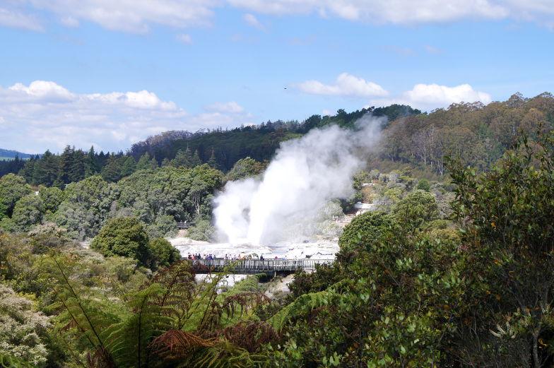 Sehenswuerdigkeit größter Geysir in Rotorua Neuseeland