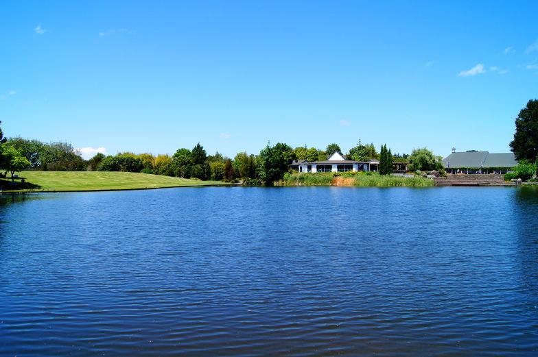 Am Eingang vom Hamilton Garden gibt es einen schön angelegten See