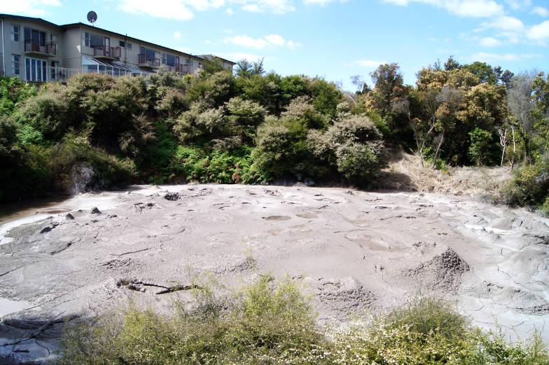 Ausflugstipp Te Puia Rotorua mit vielen Schlammpools
