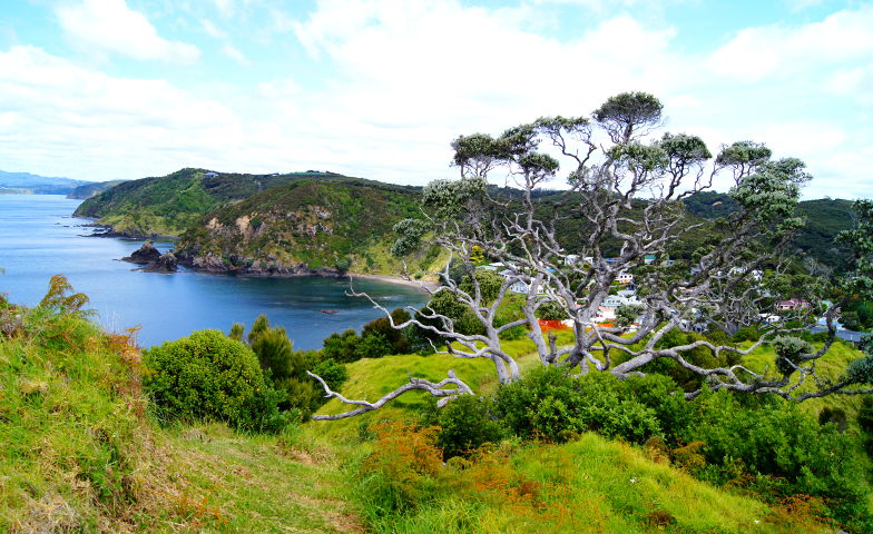 In einer Bucht von den Bay of Islands