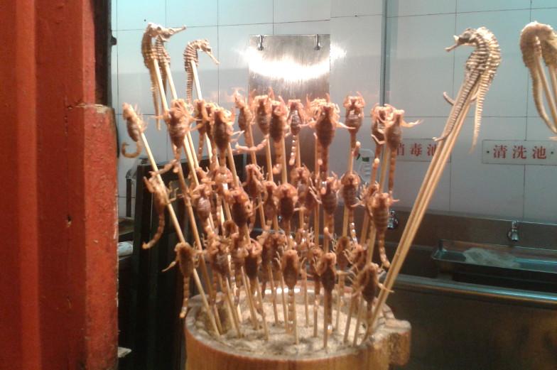 Fritierte Seepferdchen und Skorpionen auf dem Nightmarket in Peking