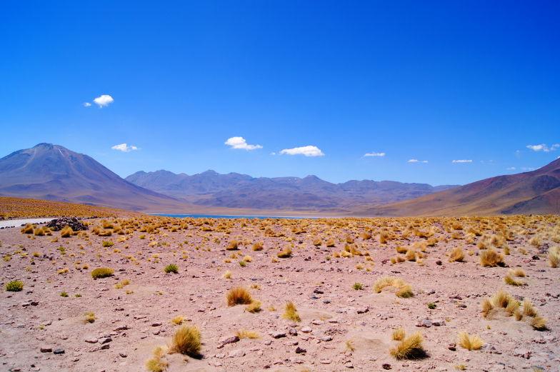 Tipp und Sehenswuerdigkeiten die Altiplano Lagunen in der Atacama Wueste