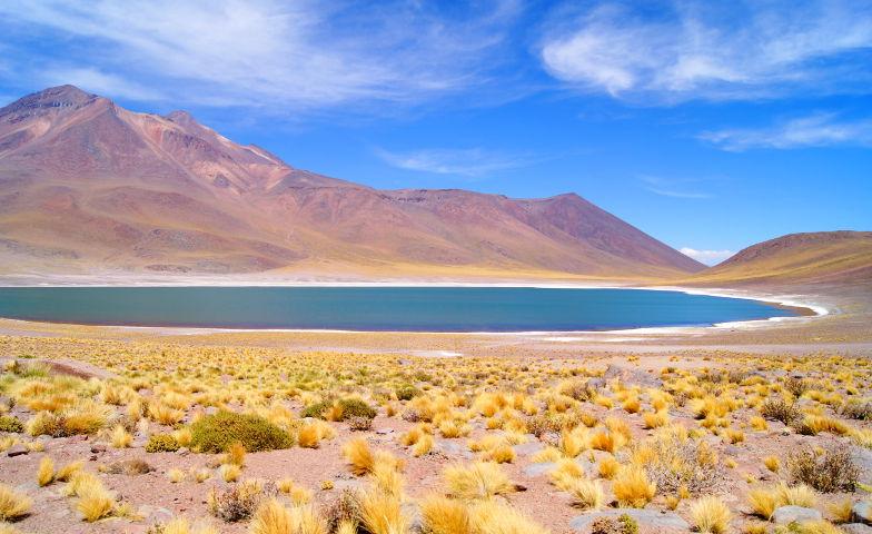 Naturschönheit Miniques Lagune Atacama