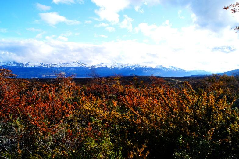 Herbstlicher Ausflug in den Torres del Paine Nationalpark
