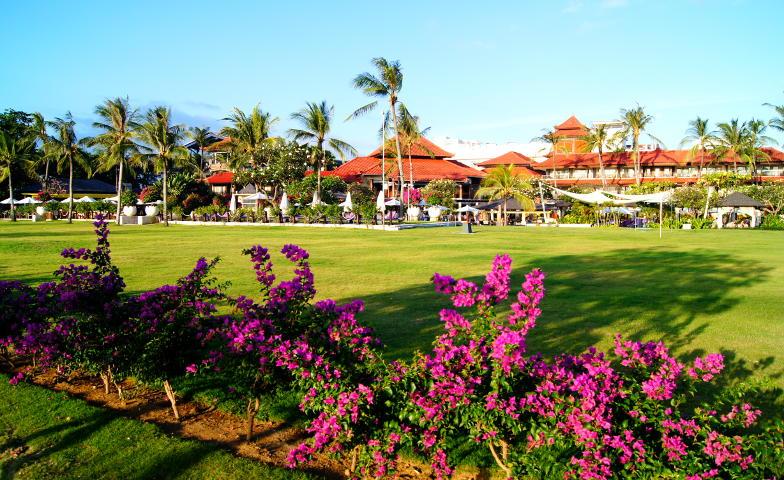 Auf Bali findest du Sonne, Strand und Palmen