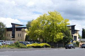 Uerbnachtungstipps Rotorua