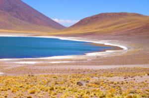 Weltreise Stopp an der Miscanti Lagune in Chile