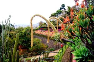 Tipp Aussicht beim botanischen Garten in Funchal