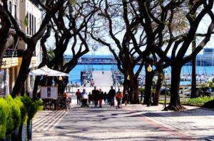 Funchal hat schoene Gassen mit Blick auf Atlantik