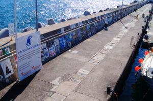 Marina Funchal Tipps Madeira