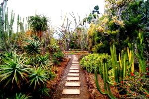 Ausflug zum botanischen Garten in Funchal