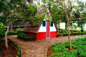Typisches Madeira Haus im botanischen Garten Funchal