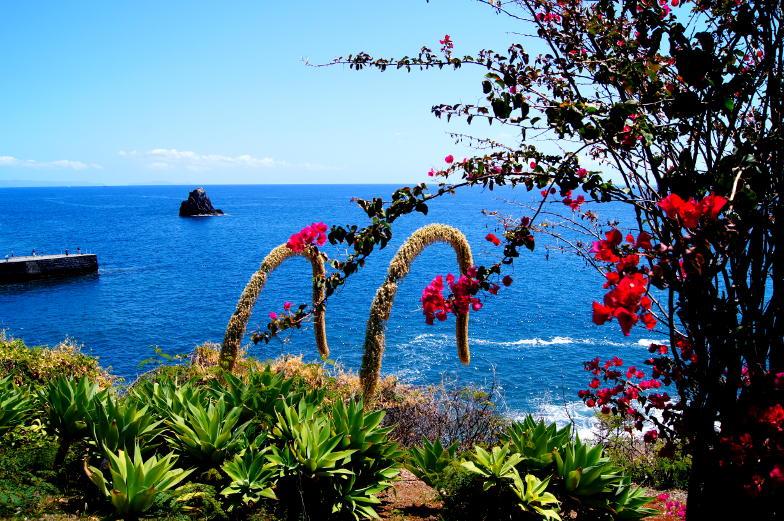 Funchal Tipps Wanderungen mit Blick auf den Atlantik