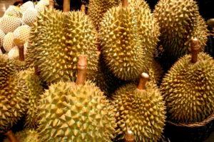 Kulinarische Weltreise nach Asien Durian Frucht Spezialität