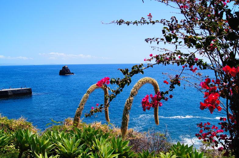 Madeira ist ein tolles Reiseziel in Europa